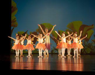 Ballett Akademie Luzern