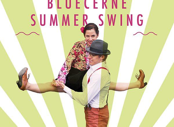 Bluecerne Summer Swing